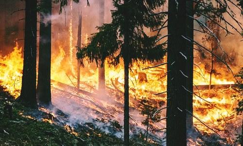 PG&E plans wildfire-prevention measures overhaul in California